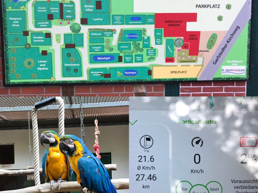 Tiergarten Ludwigslust Test